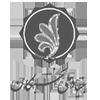 بنیاد ملی نخبگان3